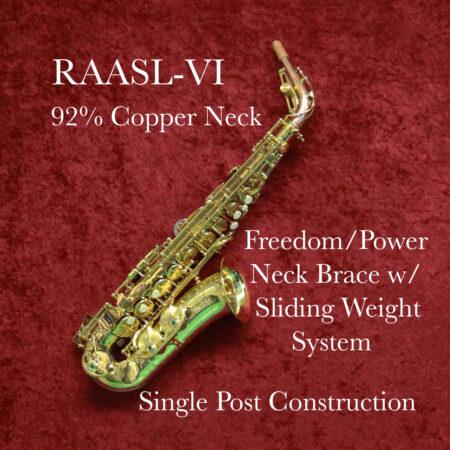 RAASL-VI Banner