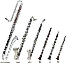 Clarinet family 1